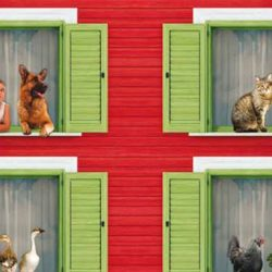 Gatti in condominio nelle parti comuni: cosa dice la legge e come evitare liti tra vicini