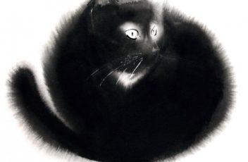 gatti_TheBookCat_p080-800x800