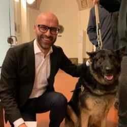 Umbria: veterinario gratis per chi adotta nei rifugi