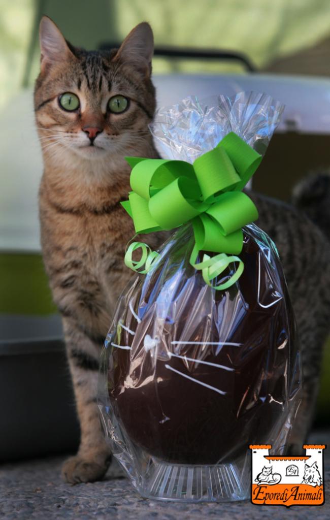 Uova di Pasqua !!