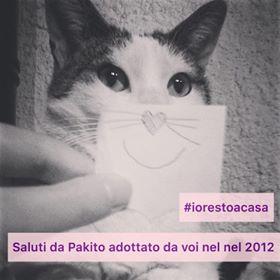#iorestoacasa(conligatto)