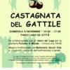 Castagnata 2020 – ESTRAZIONE il 9 gennaio !!