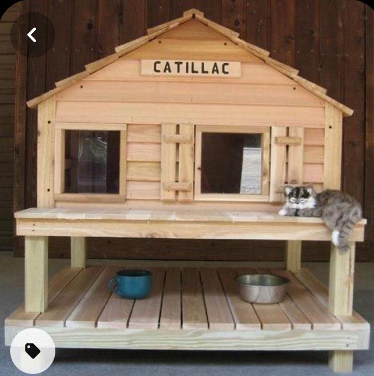 Concorso di casette per gatti !!!